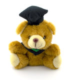 Teddy bear. Wearing a black hat Stock Photography