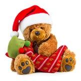 Teddy bear wearing a santa hat Stock Photos