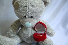 Teddy bear and wedding rings Stock Images