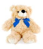 Teddy bear on white Stock Photos