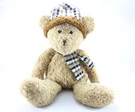 Teddy Bear. On a white background Royalty Free Stock Photo