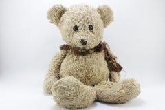 Teddy Bear. On white background royalty free stock image