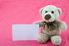 Teddy bear with white notice on pink background. Single teddy bear with white notice sitting on pink background Royalty Free Stock Photo