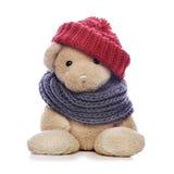 Teddy bear on white Stock Image