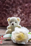 Teddy bear with white rose Royalty Free Stock Photos
