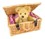Teddy Bear In A Wicker Basket Royalty Free Stock Photo