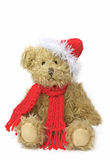 Teddy bear in winter Stock Image