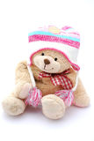 Teddy bear in winter clothes Stock Photography