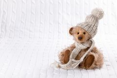 Teddy bear in winter clothes royalty free stock images