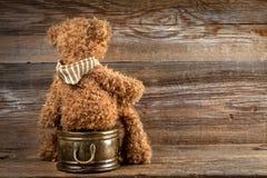 Teddy bear. Stock Photography