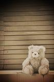 Teddy bear on wooden wall background. Teddy bear doll on wooden wall background - retro style Stock Photos