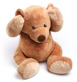 Teddy bear in a worry. Isolated over white Royalty Free Stock Photos