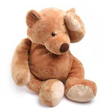 Teddy bear in a worry. Stock Image