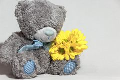 Teddy bear with a yellow bouquet royalty free stock images