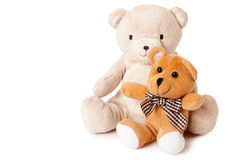 Teddy bears. Photo shot of teddy bears on white background Royalty Free Stock Photography