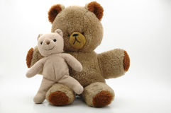 Free Teddy Bears Stock Photos - 8513013