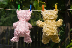 Teddy bears back view Stock Photos