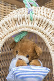 Teddy bears in the basket Royalty Free Stock Image
