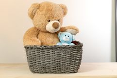 Brown a blue teddy bears in a basket. royalty free stock photos