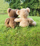 Teddy bears from behind Royalty Free Stock Photos
