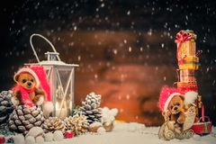 Teddy bears in christmas still life Stock Image