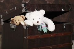 Teddy bears coming out of box Royalty Free Stock Image