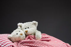 Teddy bears cuddling in the bed. Stock Photos