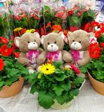 Teddy Bears With Flowers image libre de droits
