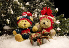 Teddy Bears with Gift - horizontal Royalty Free Stock Image