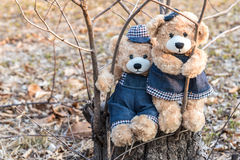 Teddy bears hanging on a branch Royalty Free Stock Images