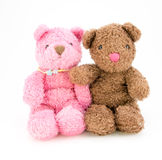 Teddy bears isolated on white background Royalty Free Stock Photos