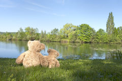 Teddy bears at the lake Stock Photos