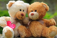 Teddy bears in love. Two  teddys  one holding a pink love heart Royalty Free Stock Photography