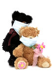 Teddy bears in masks Royalty Free Stock Image