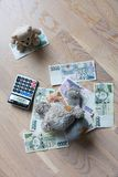 Teddy bears and money Stock Photography