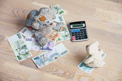 Teddy bears and money Stock Images