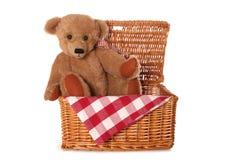 Teddy Bears Picnic Lizenzfreies Stockfoto