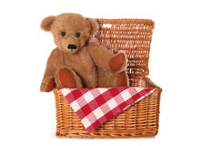 Teddy bears picnic Royalty Free Stock Photo