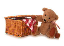 Teddy bears picnic. Studio cutout Stock Photos