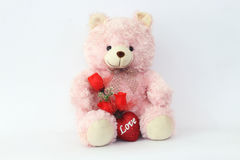Teddy bears, pink and red roses. Royalty Free Stock Images