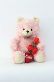 Teddy bears, pink and red roses. Royalty Free Stock Photo