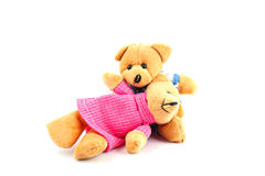 Teddy bears. Put on a white background Stock Image