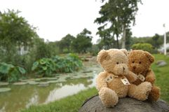 Teddy bears by river Royalty Free Stock Images