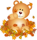 Teddy bears on set fall leaves. Scalable vectorial image representing a teddy bears on set fall leaves, isolated on white Stock Photos