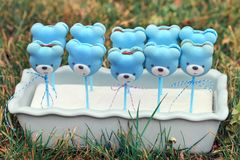 Teddy bears shaped macarons on grass background Stock Photos