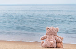 Teddy bears. Royalty Free Stock Images
