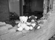 Teddy Bears Sitting On Smashed Derelict Abandoned Building Wall In Black & White Stock Photography