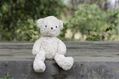 Teddy bears Stock Image