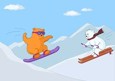 Teddy bears ski in mountains in day Stock Photos