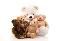Teddy bears. Royalty Free Stock Image